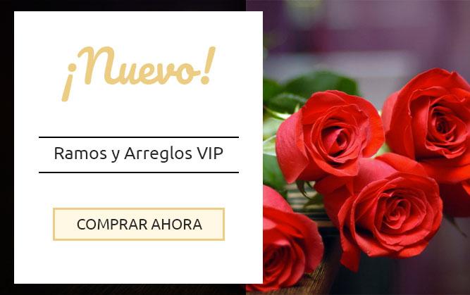 Flores A Domicilio Florería Online Envío De Flores A