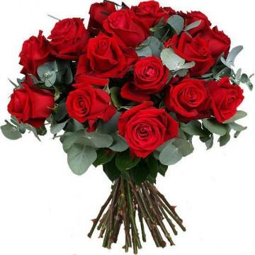 16 Rosas Rojas