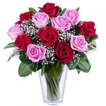 12 Rosas Rosadas & Rojas