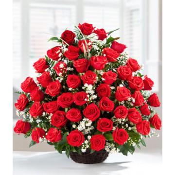 Arreglo con 48 Rosas